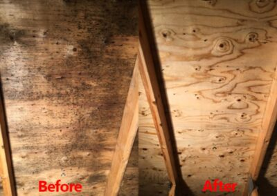 Attic and Crawlspace Stain Removal and Painting